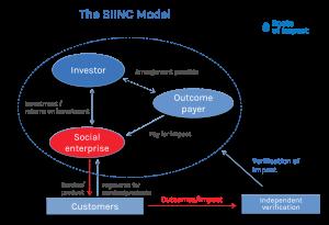 The SIINC Model