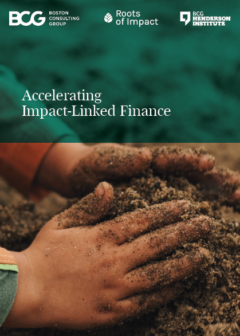 BCG Roots of Impact Accelerating ILF